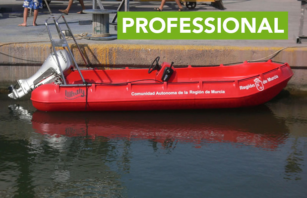 סירת Whaly 435 R Professional