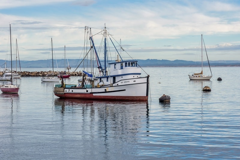 רישיון לסירה עוצמה א מחיר